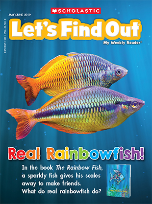 Rainbow Fish Craft Activities & Project for Pre-K - 3rd Grade ...   417x310
